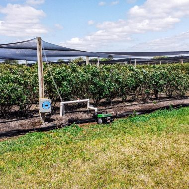 H2O Elite Labs EWC installed at agricultural farm