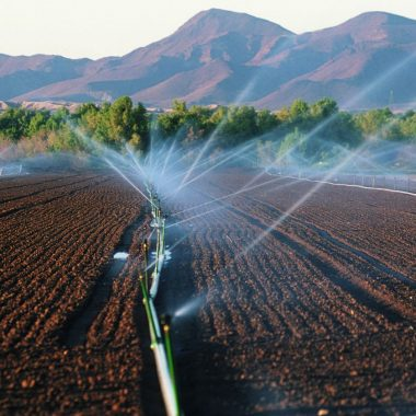 irrigation in large plowed field